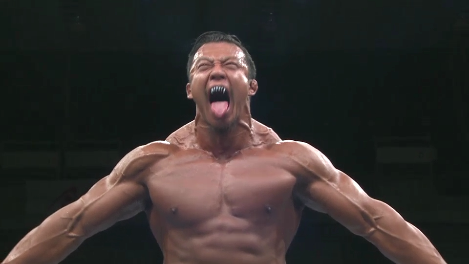 njpw_g1climax27_2017_day16.png